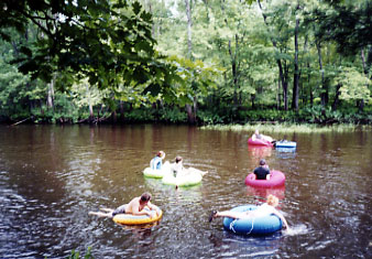 Tube, kayak or canoe the Muskegon River with White Birch